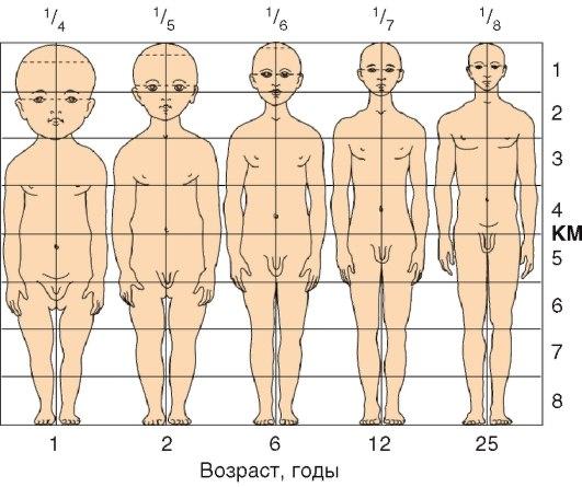 Массаж заводит не только мужиков но и телочек! В данной категории, мы хотим показать вам, как массажисты подвергаются сексуальному нападению своих посетителей!